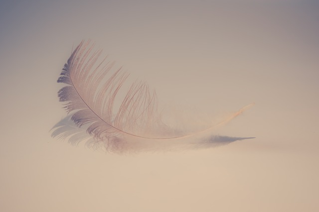 knock someone down with a feather - surprise idioms