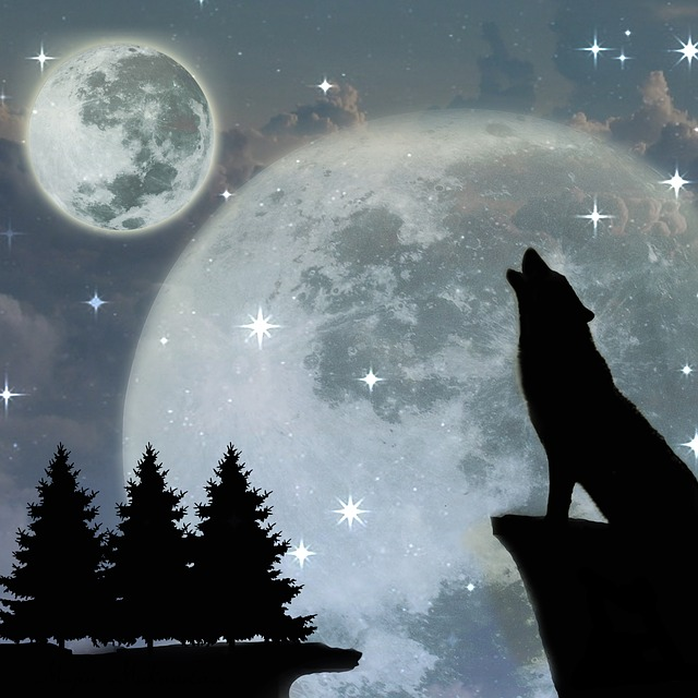 to howl at the moon - moon idioms